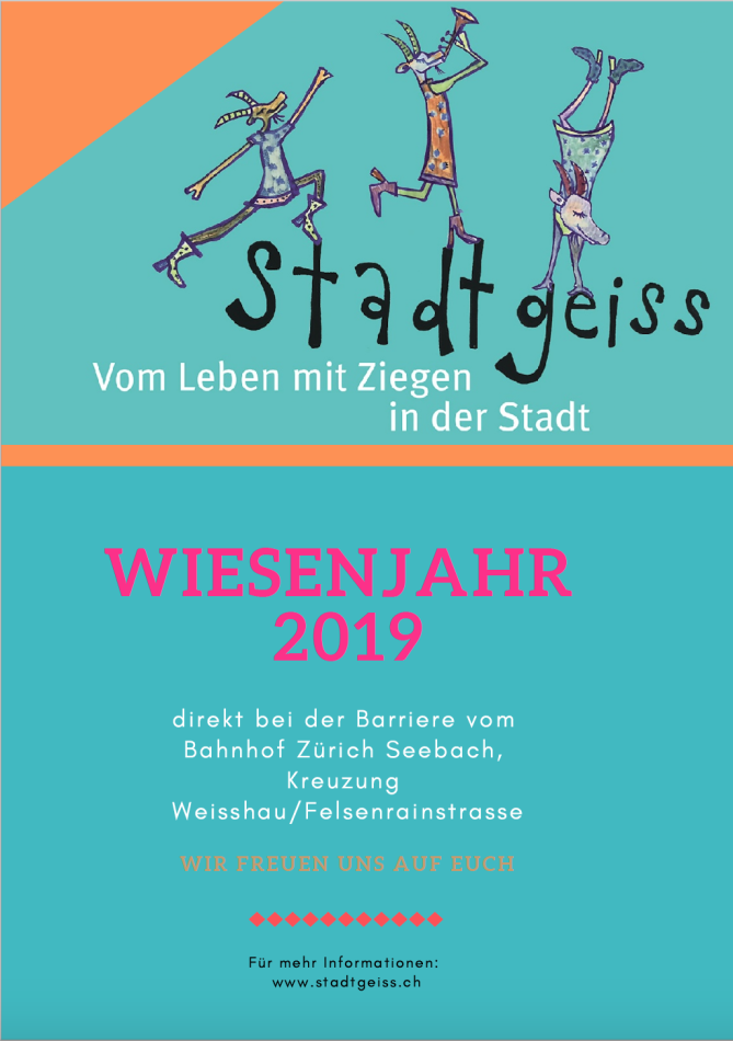 Flyer_Stadtgeiss_SV